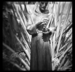 St. Francis - Santa Anna CA  10-2000